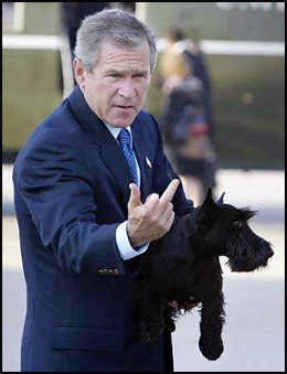 Fuck Bush: Fuck Me? Fuck You!